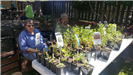 Man and Woman at table with plants at Earth Day 2018