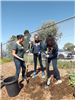 Student volunteers planting greens at Earth Day 2018