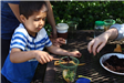 Young boy making a cup filled with plants at Earth Day 2018