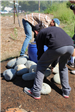 Volunteers putting decorative rocks in garden at Earth Day 2018