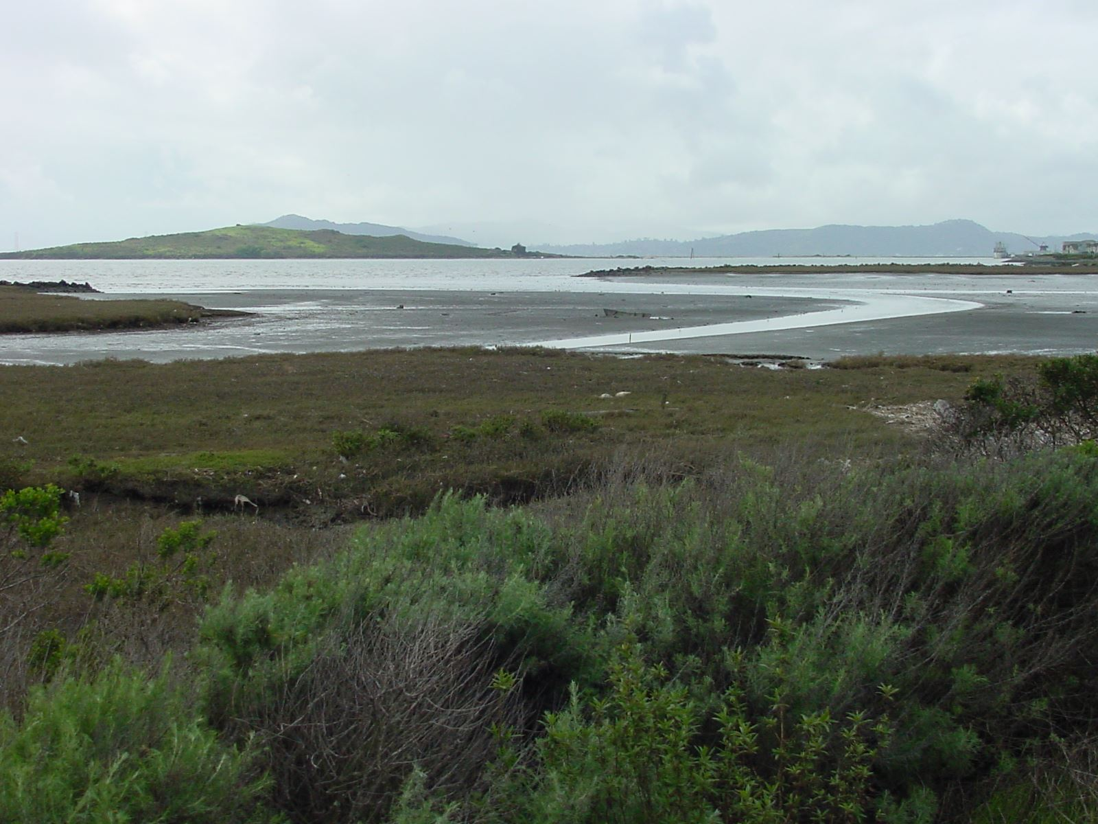 Mouth of Baxter Creek - green landscape with ponds