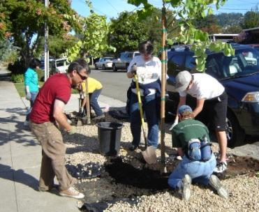 Volunteers planting trees on Earth Day