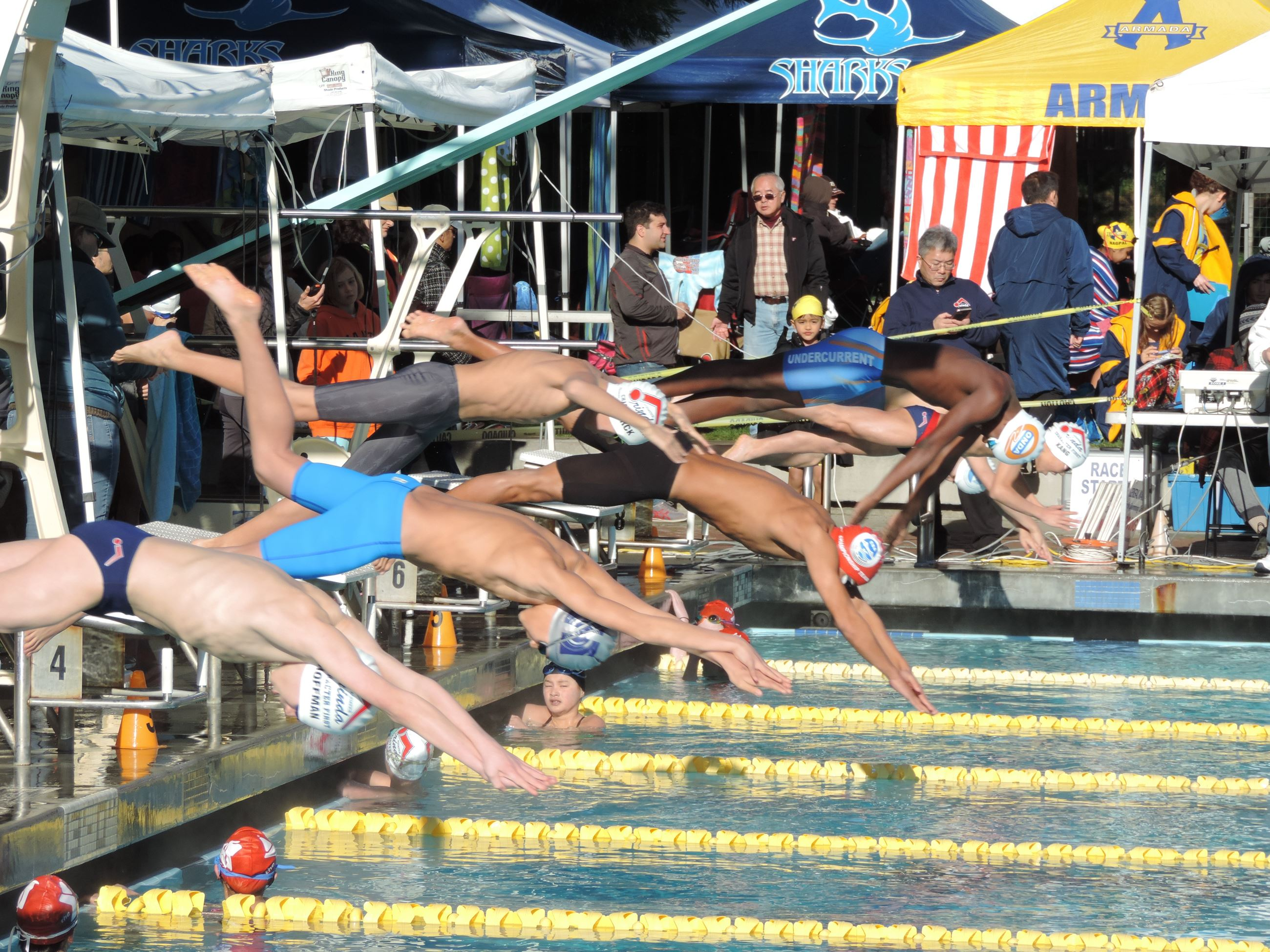 Gators Swim Meet 01.14.17 054