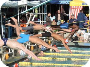 Gators Swim Meet